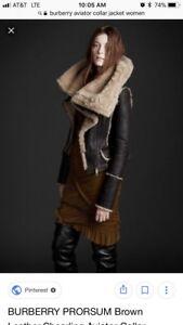 BURBERRY PRORSUM Brown Leather Shearling Fur Aviator Collar Jacket 40