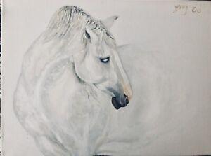 """Shy White horse "" original by YingEd, Acrylic On Canvas  18x24"" horse"