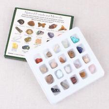 Bambini Rock e Minerale Educativo Collezione Geology Pietra Kit con /