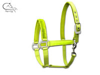 Waldhausen Hi Vis Viz Horse Reflective Headcollar Halter All Sizes FREE P&P