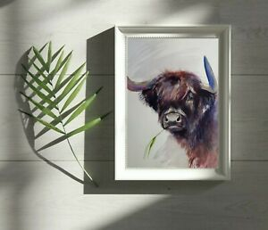 A3 Large original  watercolour animal painting , Highland cow