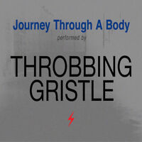 Throbbing Gristle : Journey Through a Body CD (2018) ***NEW*** Amazing Value