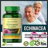 ECHINACEA COMPLEX ELDERBERRY Immunity Cough Flu Anti Virus Supplement 100 Caps