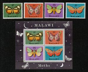 MALAWI - FAUNE Insectes Papillons de nuit - 1970