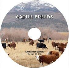 MEAT & DAIRY CATTLE BREEDS: Holstein Jersey Aberdeen Angus Shorthorn Hereford/CD