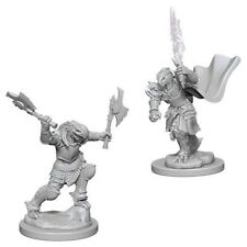 Dragonborn Fighter - Female - Wizkids Miniatures - Dungeons & Dragons - WZK73199