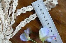 Cluny Cotton Lace CREAM - 15mm wide 3 Metre Lengths - Insert ft269 Sunrise