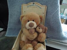 """Thinking of You """"Friends Forever"""" Bear by Gund"""