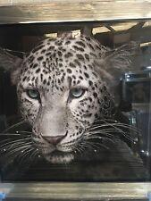 NEW Silver Mirror Frame Glitter Leopard Wildlife BigCat Liquid Art Wall Picture