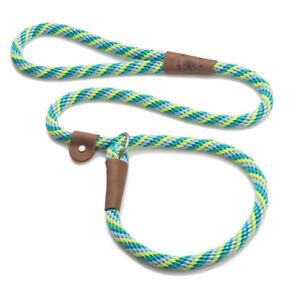 Mendota - Dog Puppy Leash - British Style Slip Lead - Seafoam - 4, 6 Foot