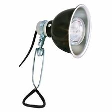 Morsetto lampada luce unità & ELEFANTE BULB ~ tartarium compatibile Tartaruga UVA LAMPADINA KIT