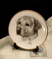 """Golden Retriever Dog Plate- Porcelain by Rosalinde- 4"""" Hand Decorated- USA-Stand"""