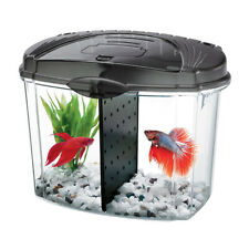 AQUEON - Betta Bowl Aquarium Kit in Black - 1/2 Gallon