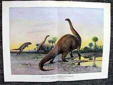 Dinosaurier Laelaps gegen Brontosaurus FARBDRUCK von 1903 Wilhelm Kuhnert