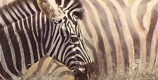 "Lyndsey Selley ""mix & match"" zebra afrique signé ltd ed taille: 39cm x 65cm neuf"