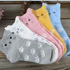CAT FACE & PAW PRINTS Ladies Cotton Socks Choice of Color One Size fits MOST