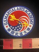 USA Flag Themed Martial Arts Patch US MARTIAL ARTS ACADEMY 01RN