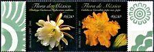 México Sc 2594 Flowers of México Pair Calabaza Pitaya Flower 2008