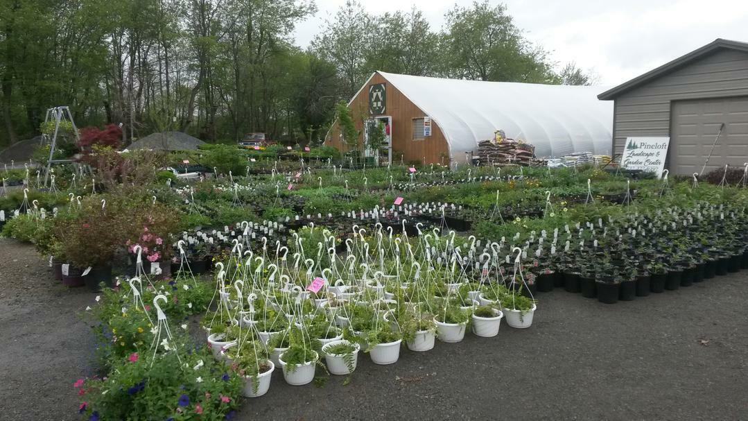 pineloftgardencenter
