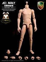 ACI Toys 1/6 B-5 Medium Built Body: Edward_ Loose Set _No original Box AT098AA