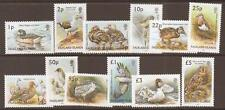 FALKLAND ISLANDS SG954/65 2003 BIRDS MNH