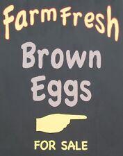 "TIN SIGN ""Farm Fresh Eggs Brown"" Food Rustic Wall Decor"