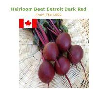 Organic Beet Seeds:  Dtroit Dark Red :Heirloom Non GMO