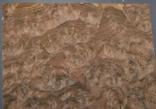 Walnut Burl Raw Wood Veneer Sheet 12 X 13 Inches 142nd Thick E4704 47