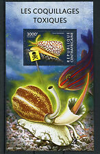 Central African Republic 2015 MNH Toxic Shellfish 1v S/S Shells Seashells Stamps