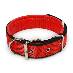 Dog Collar Padded Eyelet Nylon Metal Pet Puppy Cat Adjustable Collars UK Stock