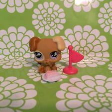 Littlest Pet Shop snow eyes puppy dog # 760  Special Advent Calendar pet