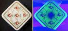 Square Antique Victorian Glass Enamel Pink Roses  Uranium Glows Black in Light