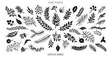 Dixie Plate Stamping Nail Art Accessories Lots of Leaves mini plate