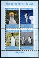 Chad 2019 CTO Penguins King Penguin 4v M/S Pingouins Birds Stamps