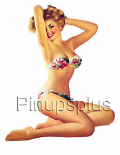 Vintage Pinup Pin-Up Guitar Girl Waterslide Decal S48