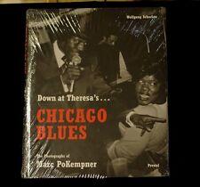 DOWN AT THERESA'S CHICAGO BLUES MARK POKEMPNER  SEALED