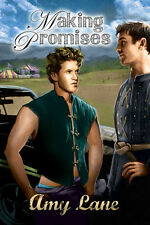MAKING PROMISES by Amy Lane EROTIC GAY CONTEMPORARY ROMANCE ~ COMBINED SHIPPING!