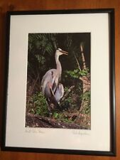 """Photograph Great Blue Heron-13 1/2"""" x 11 1/4""""-Signed-Framed-SHIPS FREE"""
