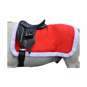 Hy Christmas Santa Exercise Sheet - Horse Dress Up
