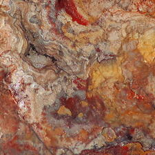 Red Crazy Lace agate Lapidary Cabochon rough 82.5 lbs Great colors /patterns
