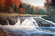 Gull River Falls, Jake Vandenbrink, Canadian Landscape Limited/Signed COA