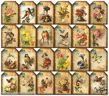"""SET OF 24 (1.5""""X1.75"""") FLORAL BIRD POSTCARDS (24) SCRAPBOOK CARD HANG GIFT TAGS"""
