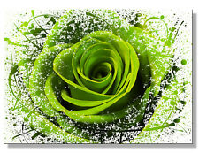 GREEN LIME ROSE ABSTRACT MODERN FLOWERS Pictures Canvas Wall Art Prints Unframed
