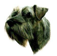 MINI-SCHNAUZER DOG (UnCrop)HEAD on TWELVE Identical 6 inch Fabric Squares- Quilt