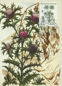 Card Postal CEF 1er Day France Flowers Of Mountains Carline 1983