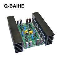 2PIECES Dual-Channel L15 FET Power Amplifier Board Con Dissipatore