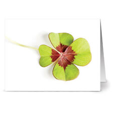 24 St. Patrick's Day Note Cards - Four Leaves of Luck - Green Envs