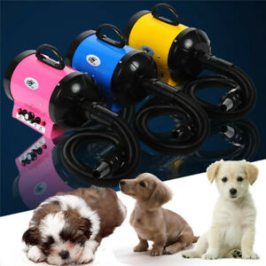 110V 2800W High Powe rDog Pet Grooming Dryer Hair Removable Hairdryer + 3 Nozzle