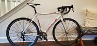 Cannondale CX9 Gravel/Cyclocross Bike W/Campy Record SIZE 56