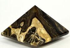 6.1cm Naturale Stomatolite / Alghe Fossile Pyramid Gemma Cristallo Minerale -
